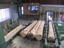 rundholzzufuehrung-bandsaege-1